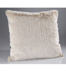 Beige Frost Cushions